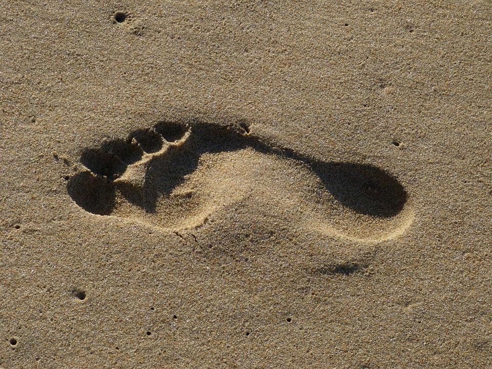 изображение с бесплатного фотостока Pixabay